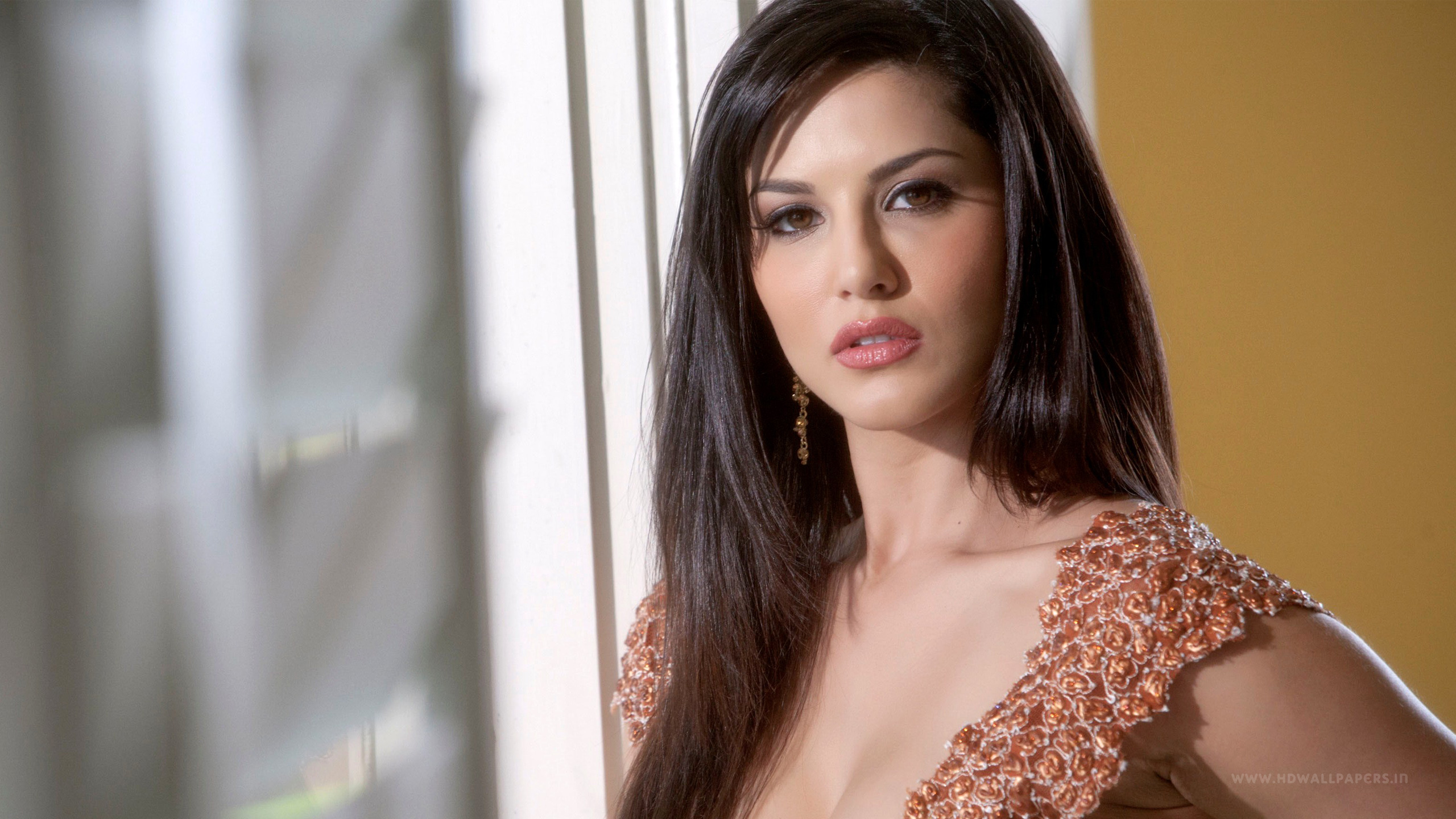 sunny leone hd wallpapers movie hd wallpapers 2560x1440