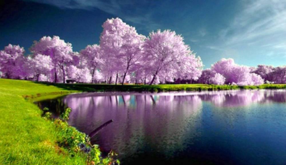 Nature Lake And Mountains K Hd Samsung Galaxy Tab Wallpapers 1000x578