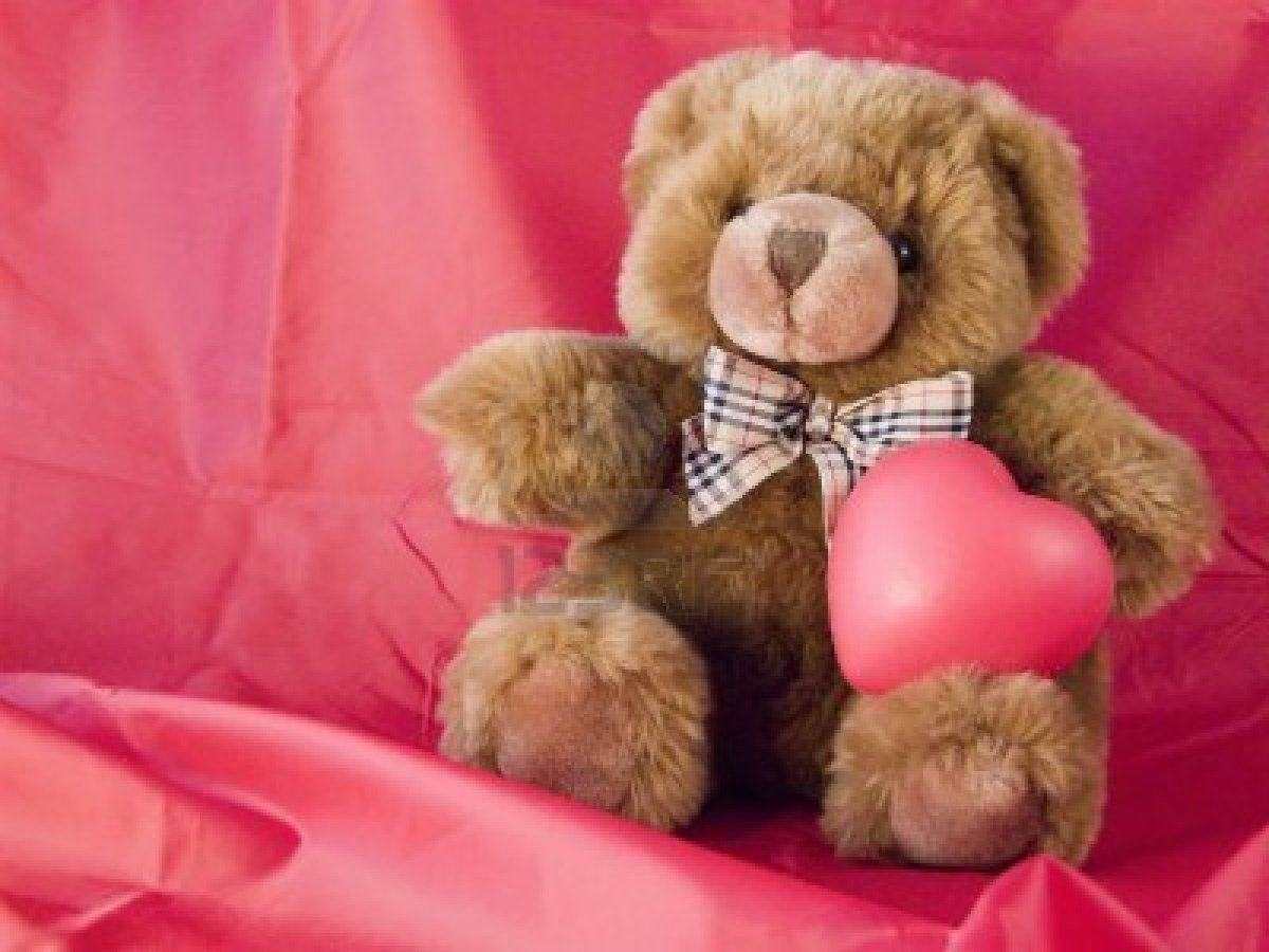 Teddy Bear Wallpapers Free Download Group 1200x900