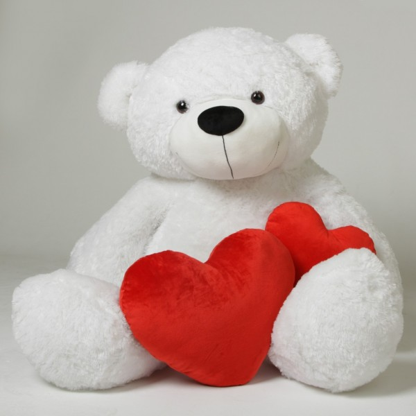 I Love You Teddy Bear Wallpapers Hd Images New 600x600