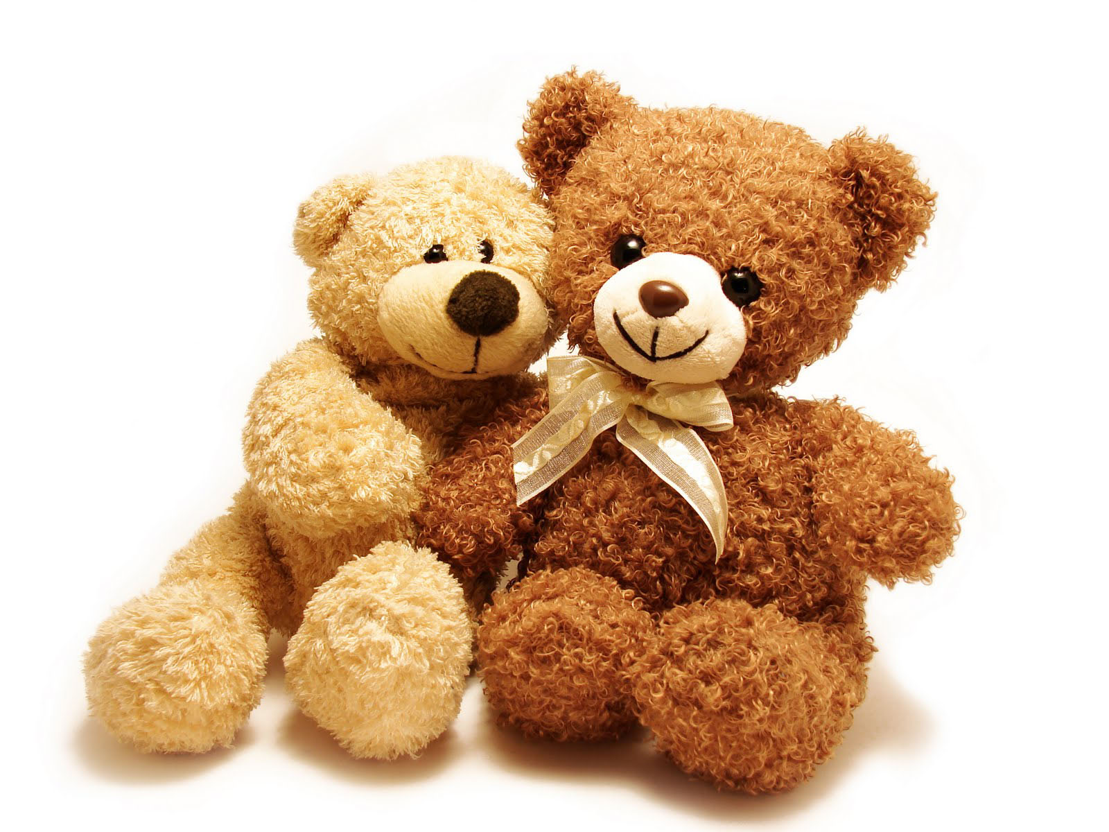 Lovely And Beautiful Teddy Bear Wallpapers Allfreshwallpaper 1600x1200