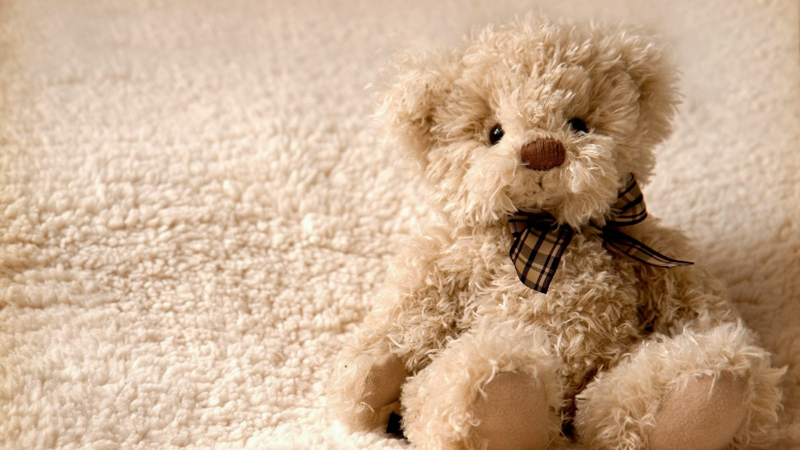 Cute Teddy Bear Pictures Hd Images Free Download Desktop 1600x900