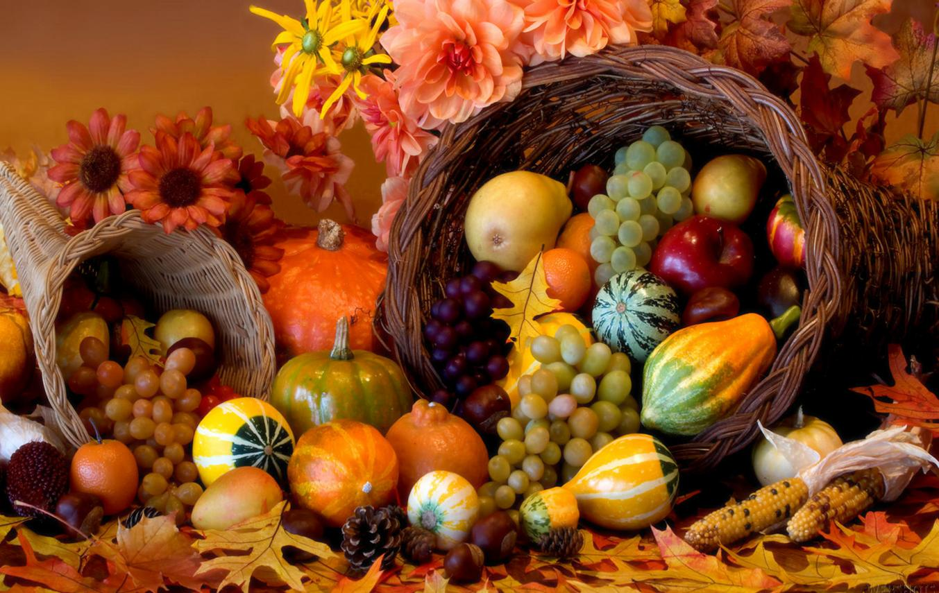 Free Download}* Happy Thanksgiving Images Wallpaper Pictures 1353x855
