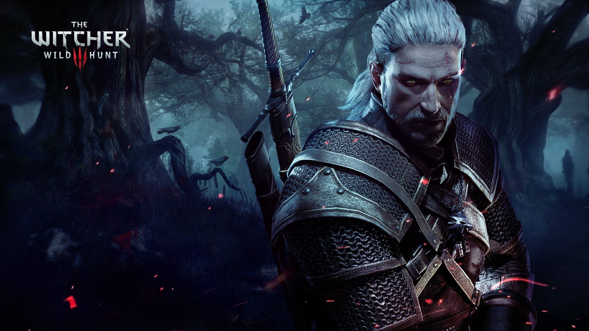 The Witcher  Wild Hunt Girl Wallpaper  Games HD Wallpapers 1920x1080