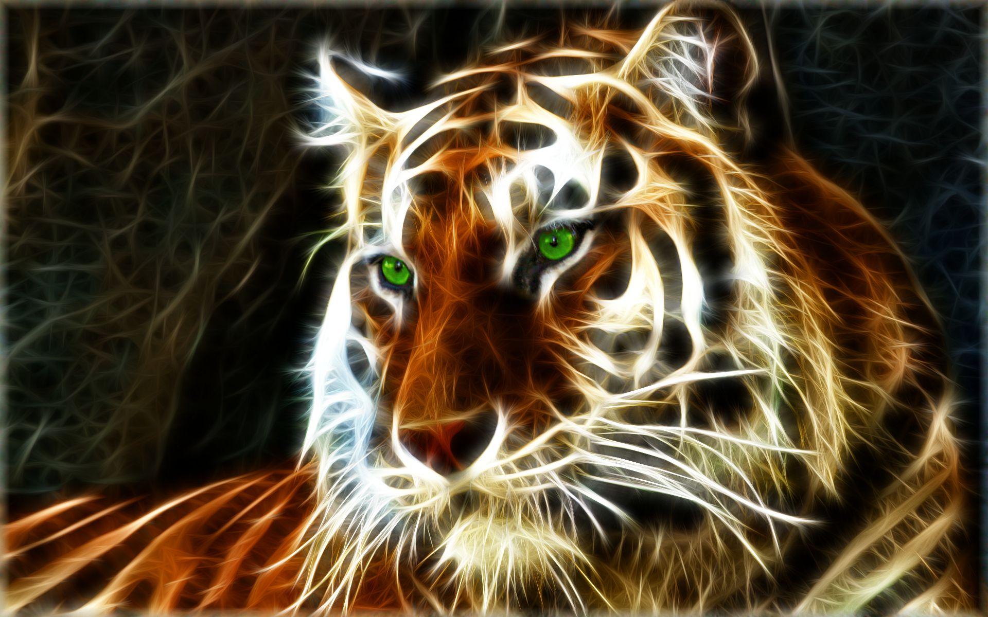 high resolution tiger wallpaper × full size 1920x1200