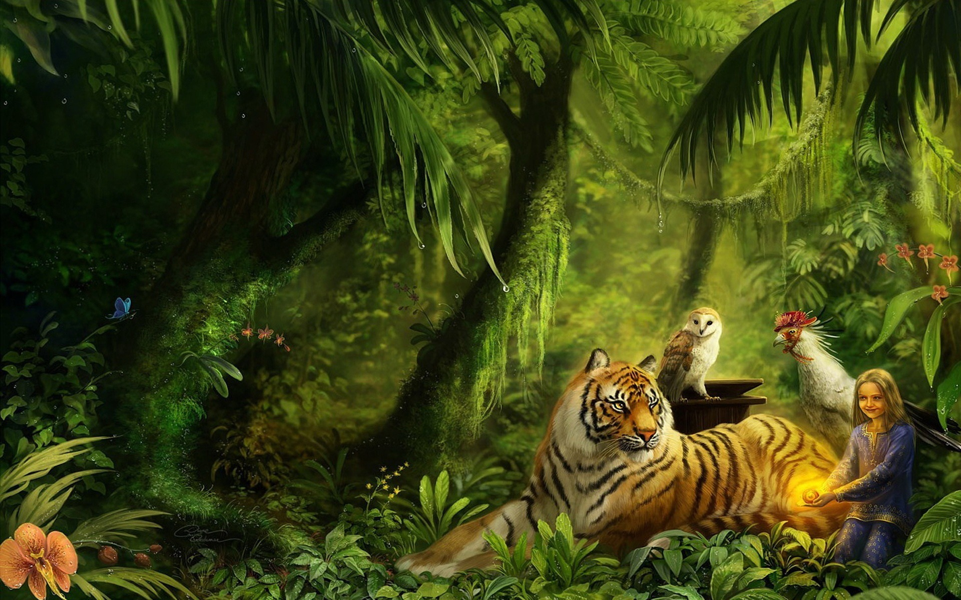 Tiger HD Photos Wild Animal Wallpapers Images Pictures