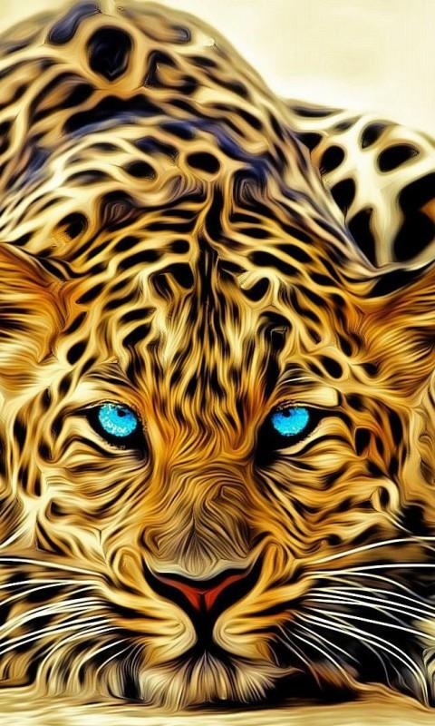amur tiger desktop hd wallpaper download for iphone ipad borders 480x800