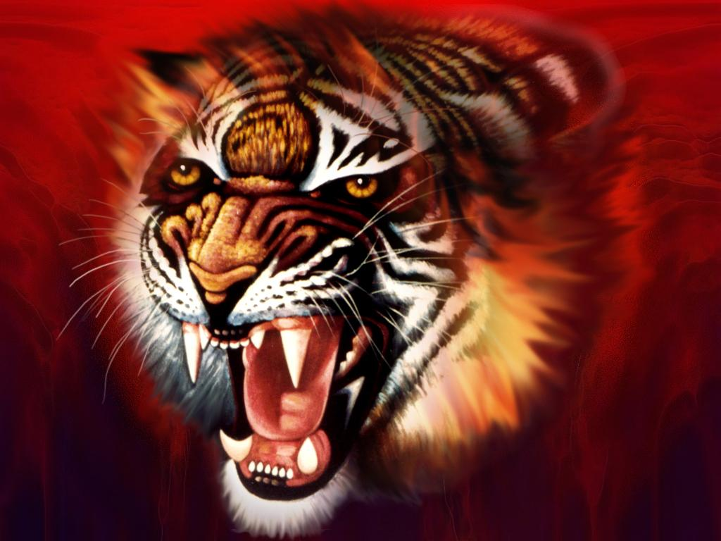 animated tiger nokia mobile wallpapers mobile phone hd 1024x768