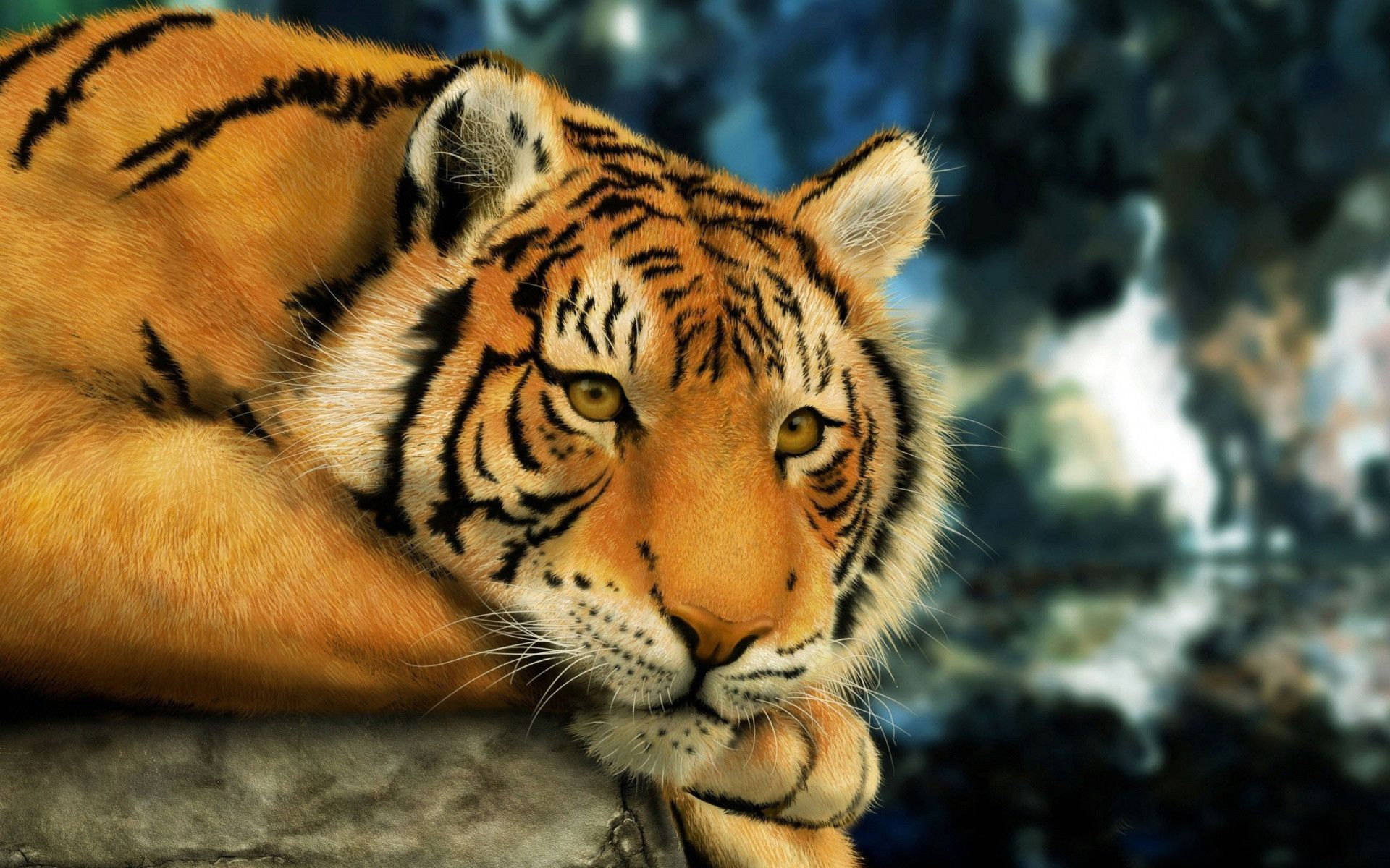 Full HD P Tiger Wallpapers Desktop Backgrounds 1920x1200