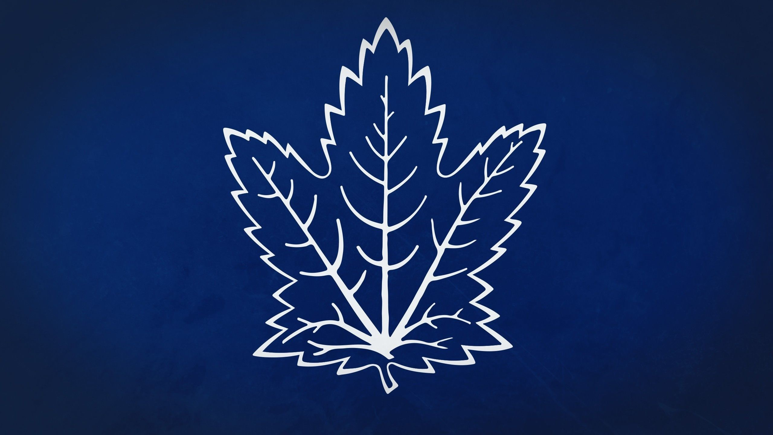 Toronto Maple Leafs Wallpapers Wallpaper  2560x1440