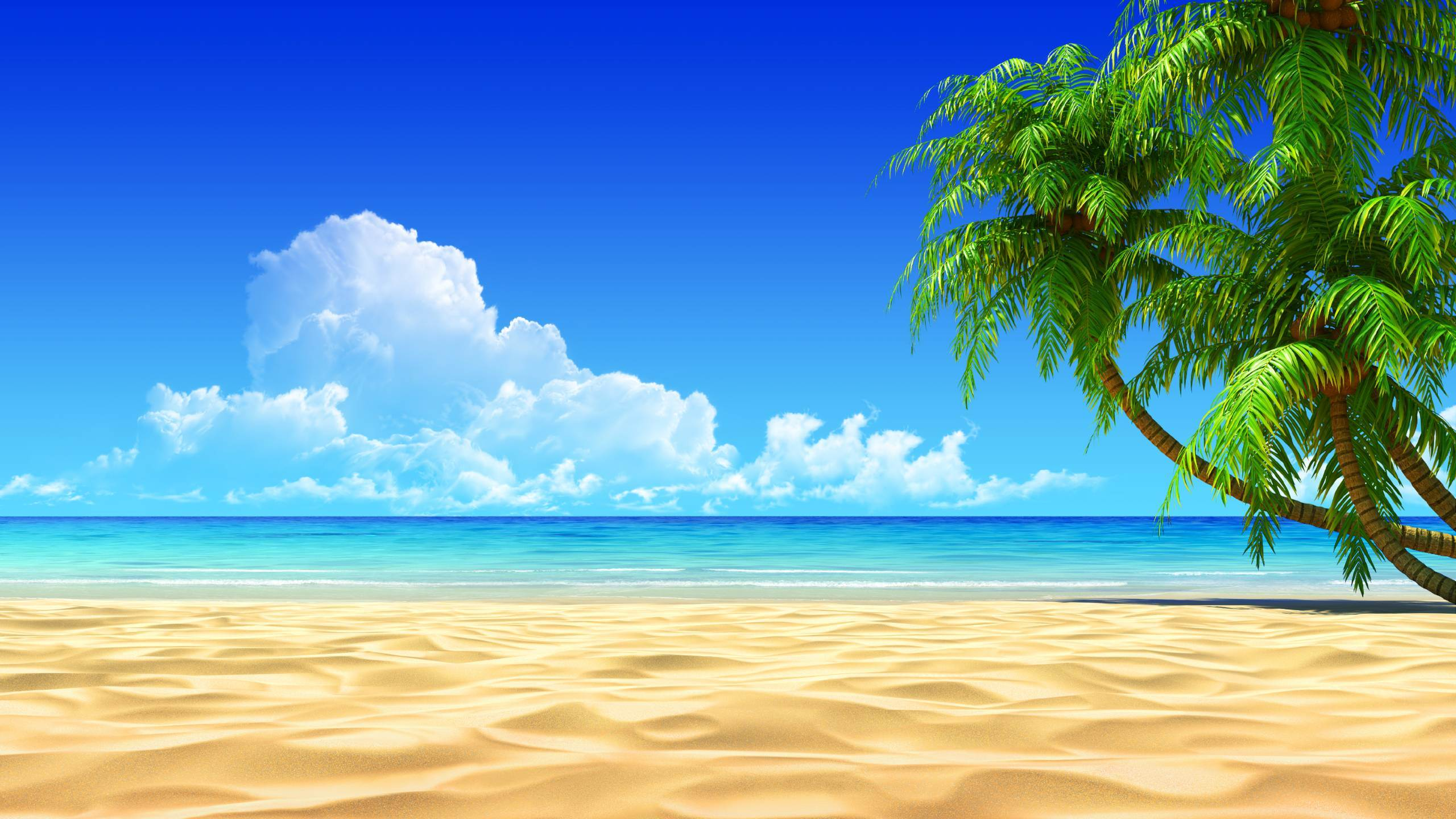 elements of tropical beach background vector art free vector in