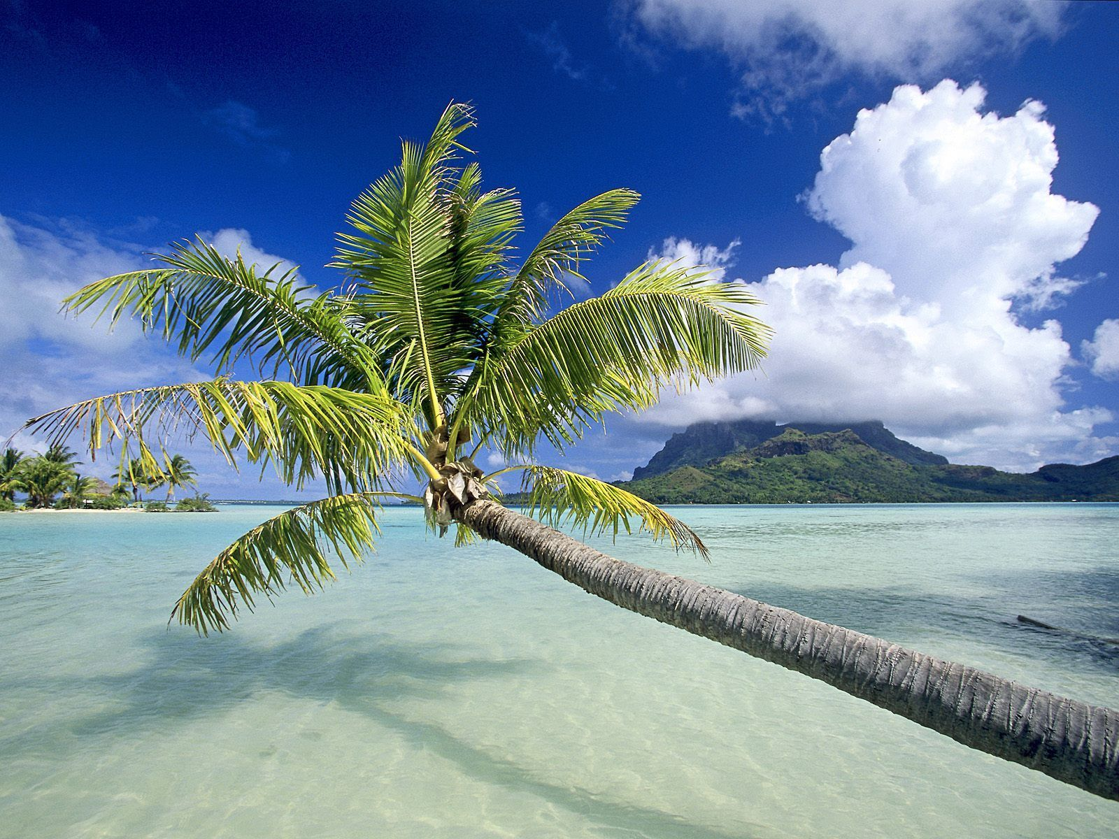 Tropical Island Desktop Backgrounds Group  1600x1200