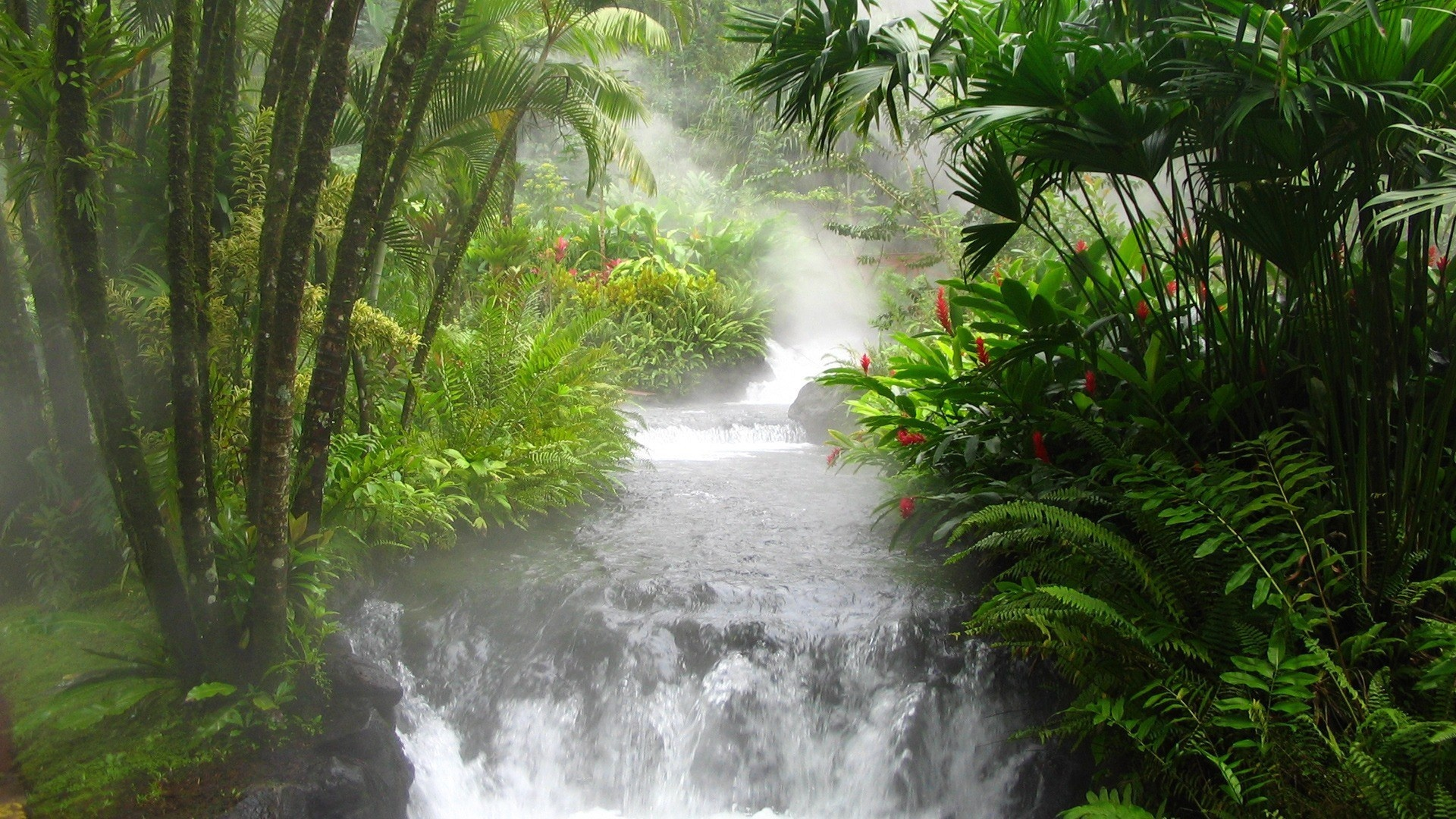 Download tropical rainforest waterfall wallpaper 1920x1080 voltagebd Image collections