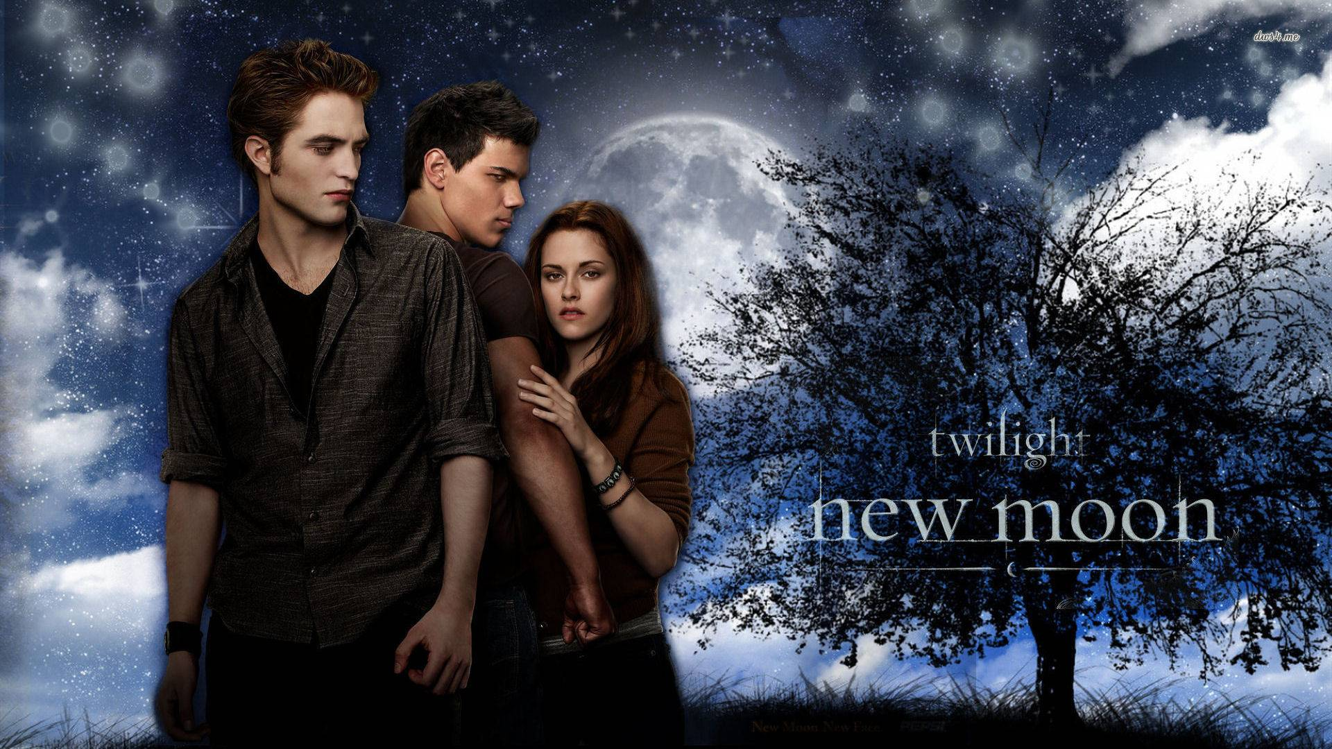 Сага kristen stewart robert pattinson тэйлор лотнер фильмы 1152x864 new moon taylor lautner кристен стюарт роберт