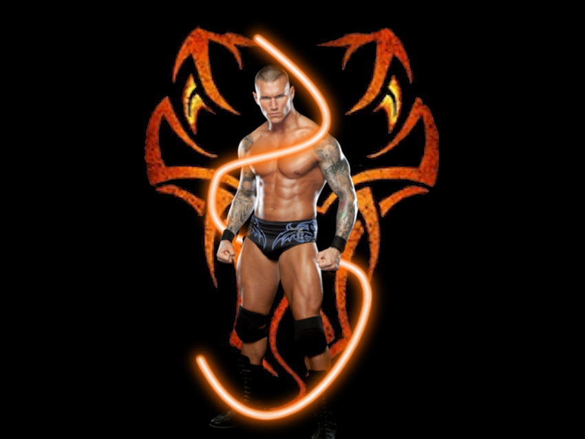 Randy Orton HD Wallpapers  BackgroundHDWallpapers 850x638