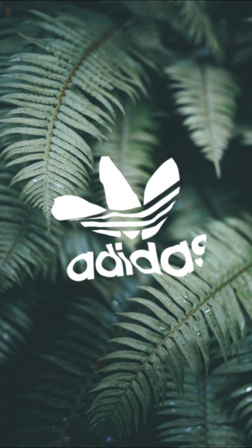 Adidas Originals Logo Gallery Wallpaper for Free Fine 500x889 c7b5b1b29c2ae