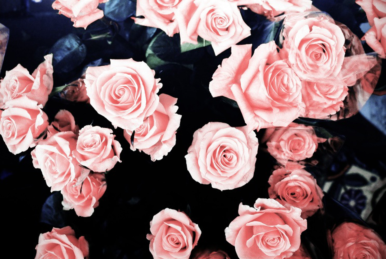 wallpaper girly 1339x900