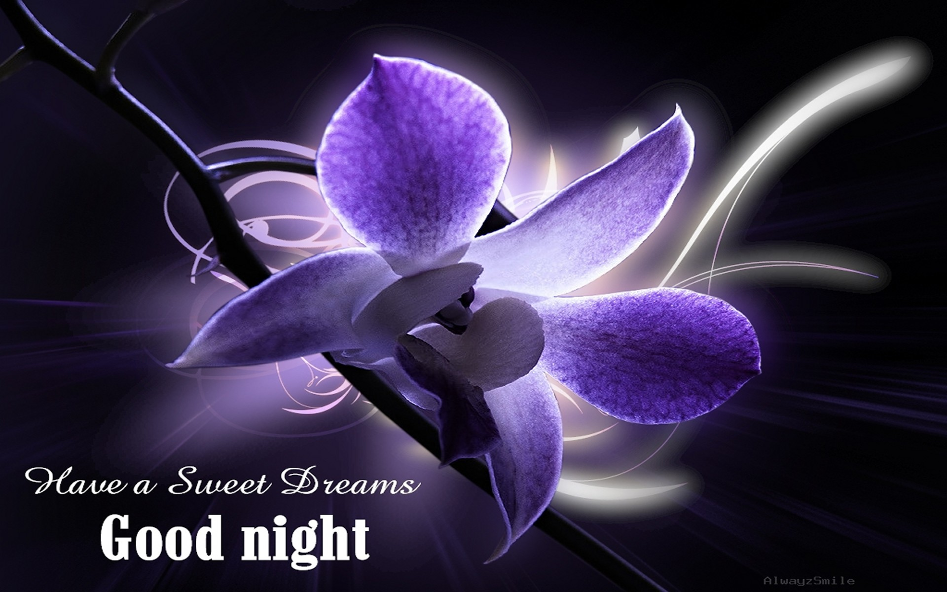 Free download beautiful good night wallpapers hd 1920x1200 voltagebd Choice Image