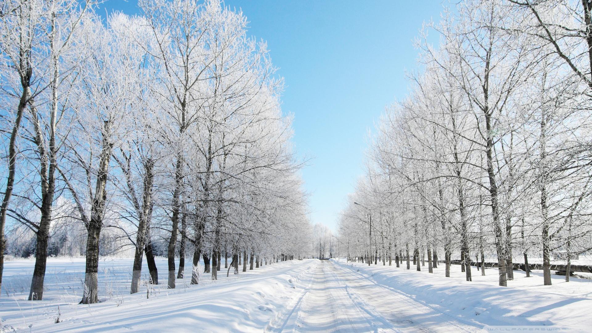 wallpaper snow 047