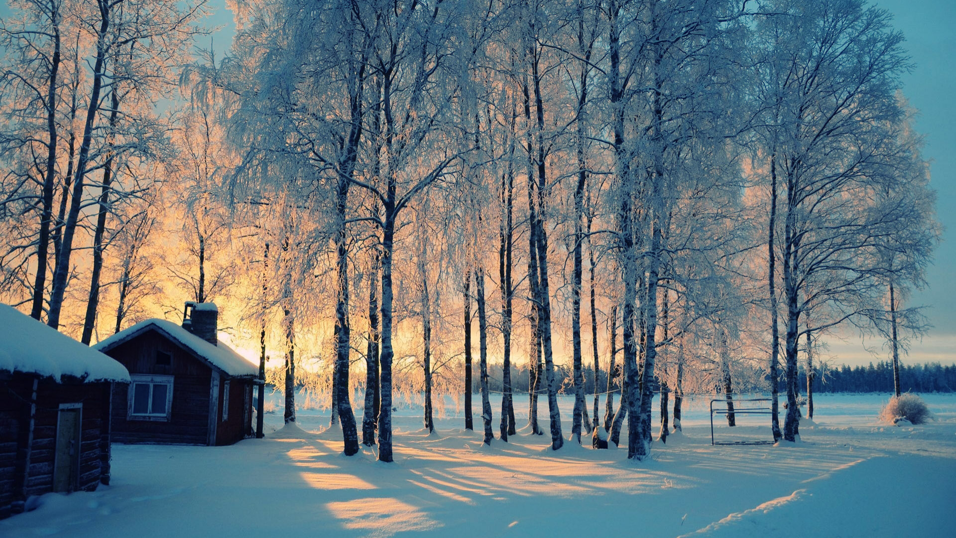 Winter Backgrounds download free