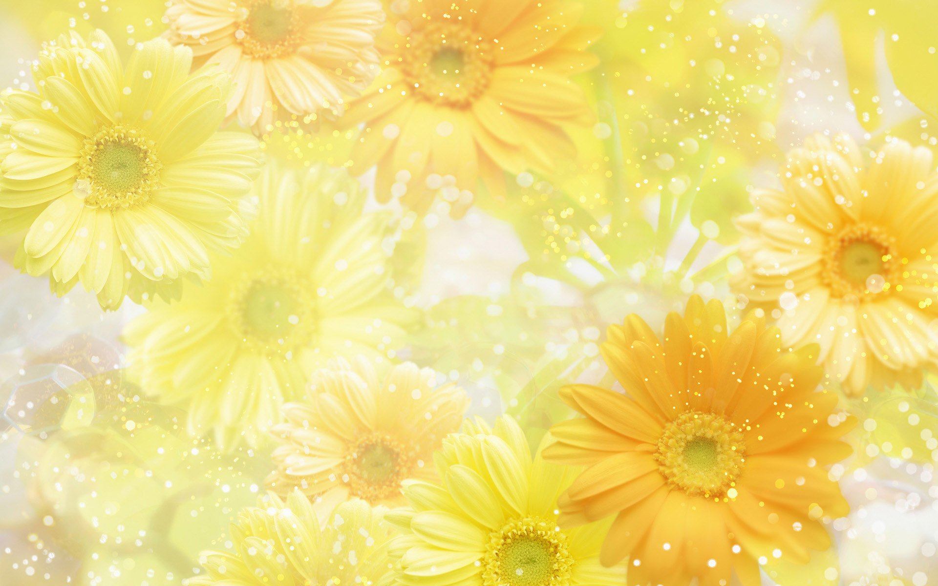 the yellow wallpaper summary enotes yellow backgrounds image wallpaper 1920x1200