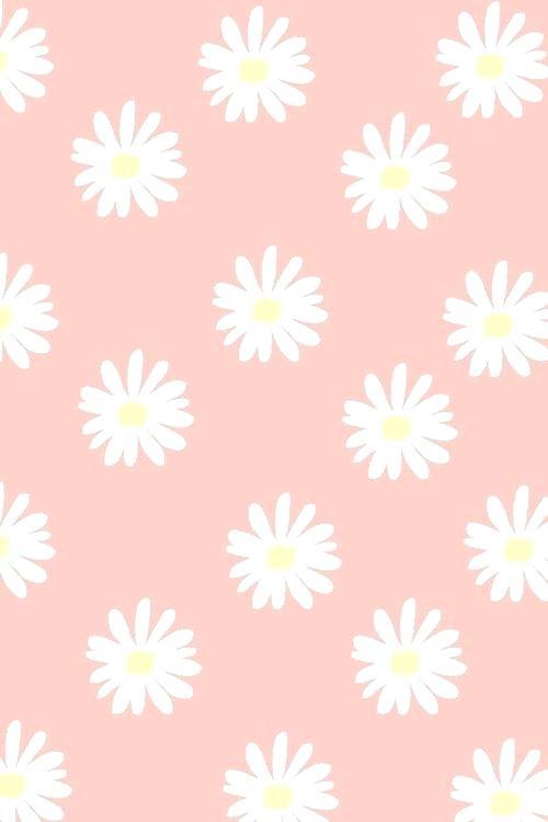 Pastel Pink Wallpaper Cute Daisy Pastel Pink Wallpaper