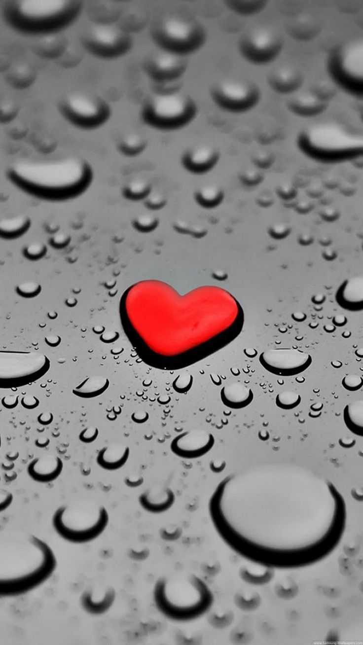 Hd Love Wallpaper For Mobile All Wallpapers Pinterest