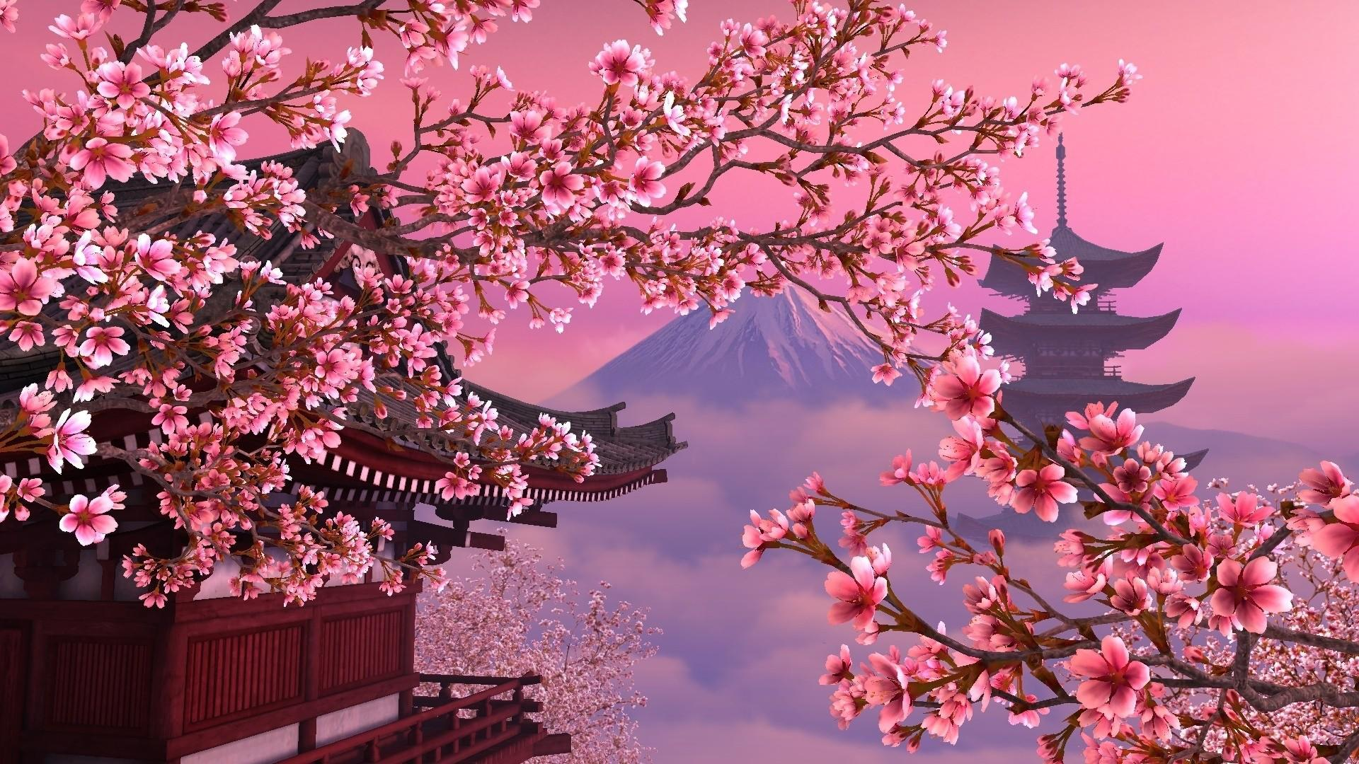 Download Sakura Tree Wallpaper  Free Wallpaper For