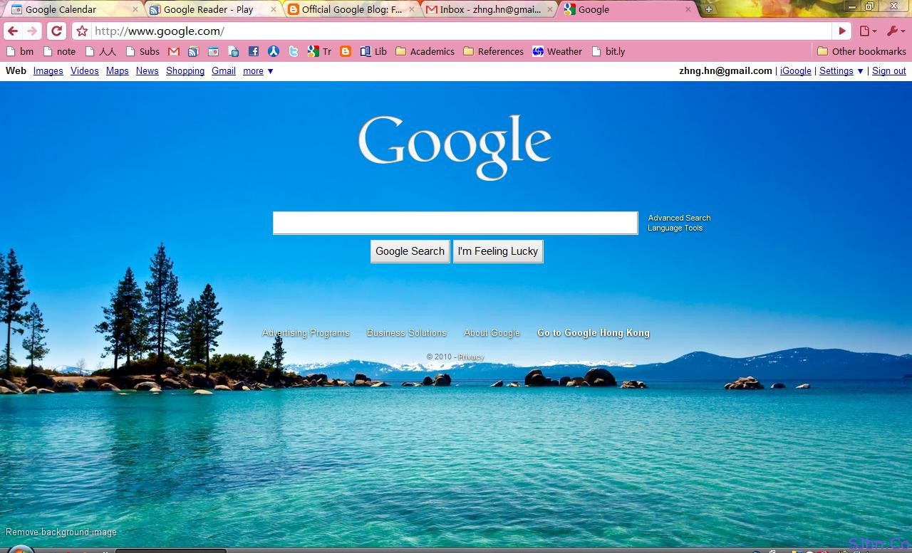google themes and skins userstyles wallpapers for google homepage