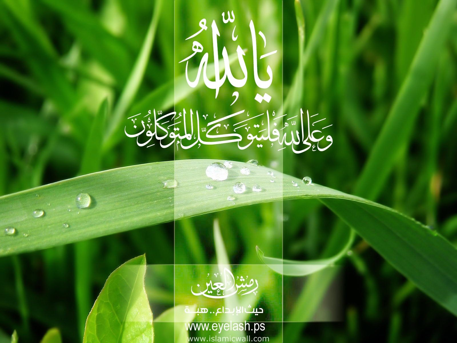 Wallpapers Islami Untuk Laptop 46 Wallpapers – Adorable