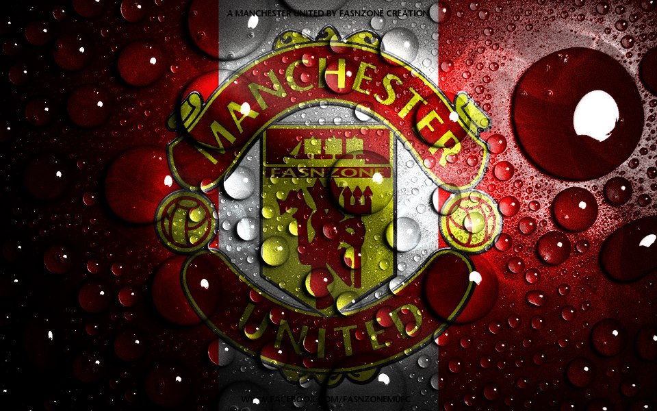 Manchester united logo wallpapers hd wallpaper 960x600 voltagebd Choice Image