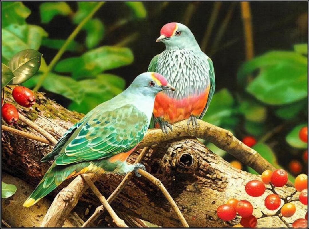 Beautiful Birds Hd Wallpapers Hd Wallpapers Pop 1080x800