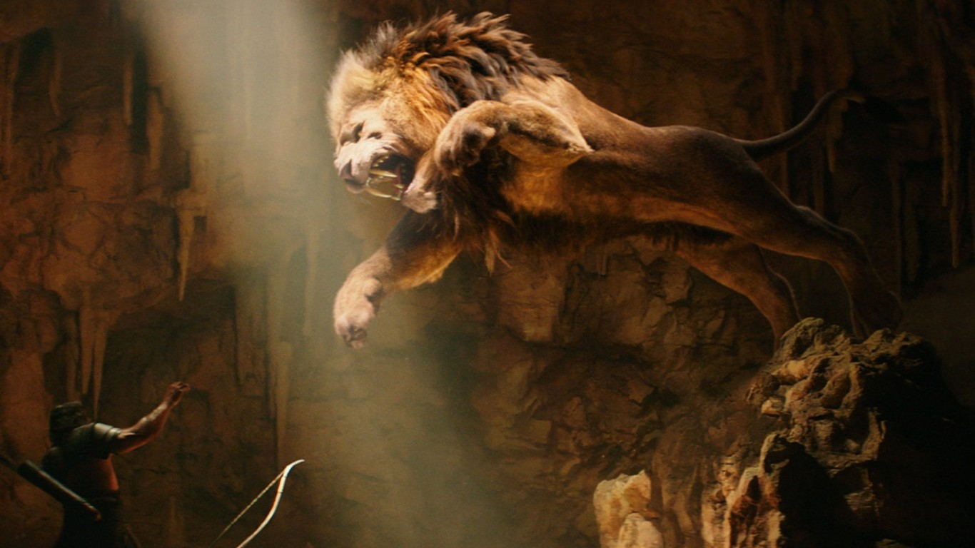 Lion tumblr wallpaper