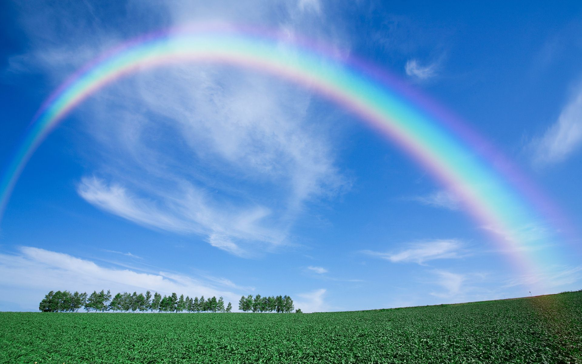 Rainbow Wallpapers Free Download Hd Latest Amazing Beautiful
