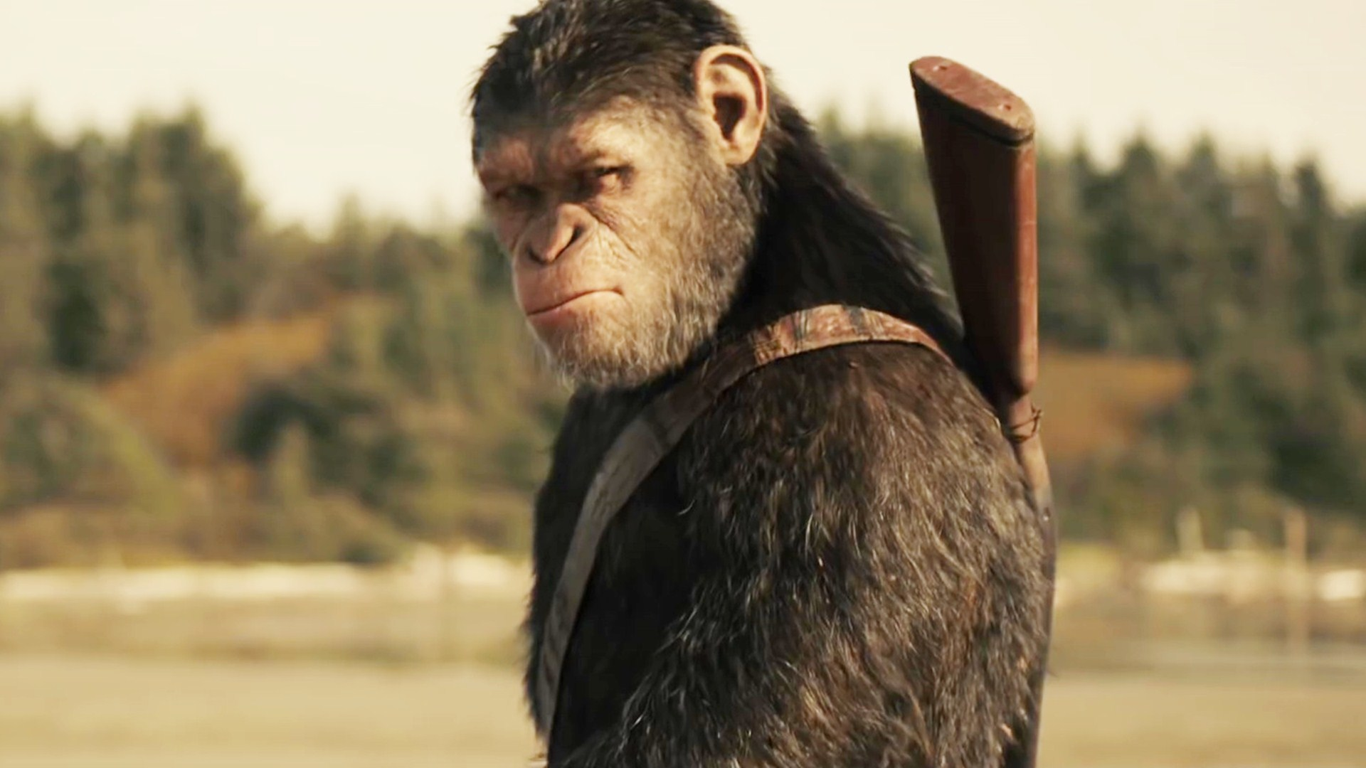 planet of the apes 2017 full movie free download