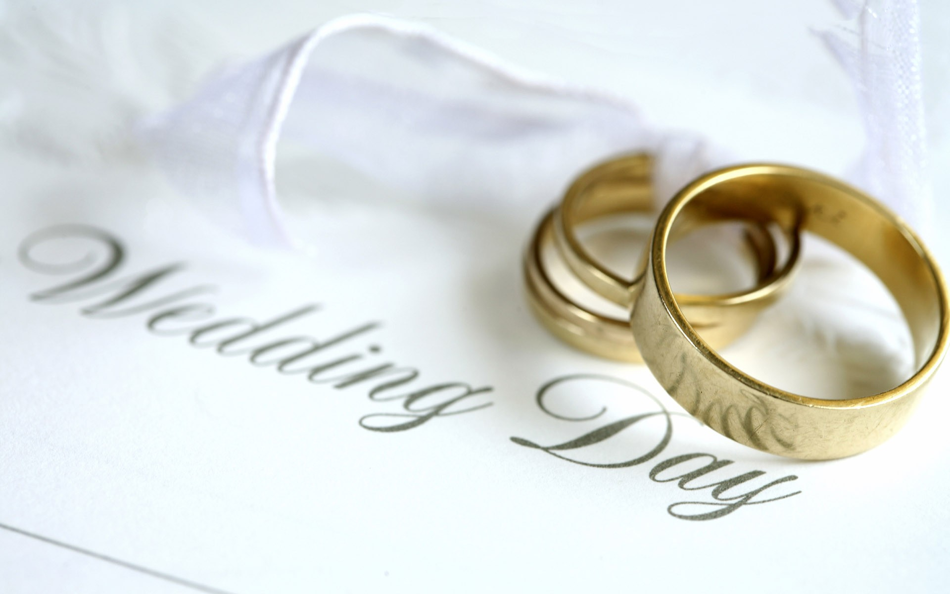 Wedding Wallpapers Hd Free Download 1920x1200