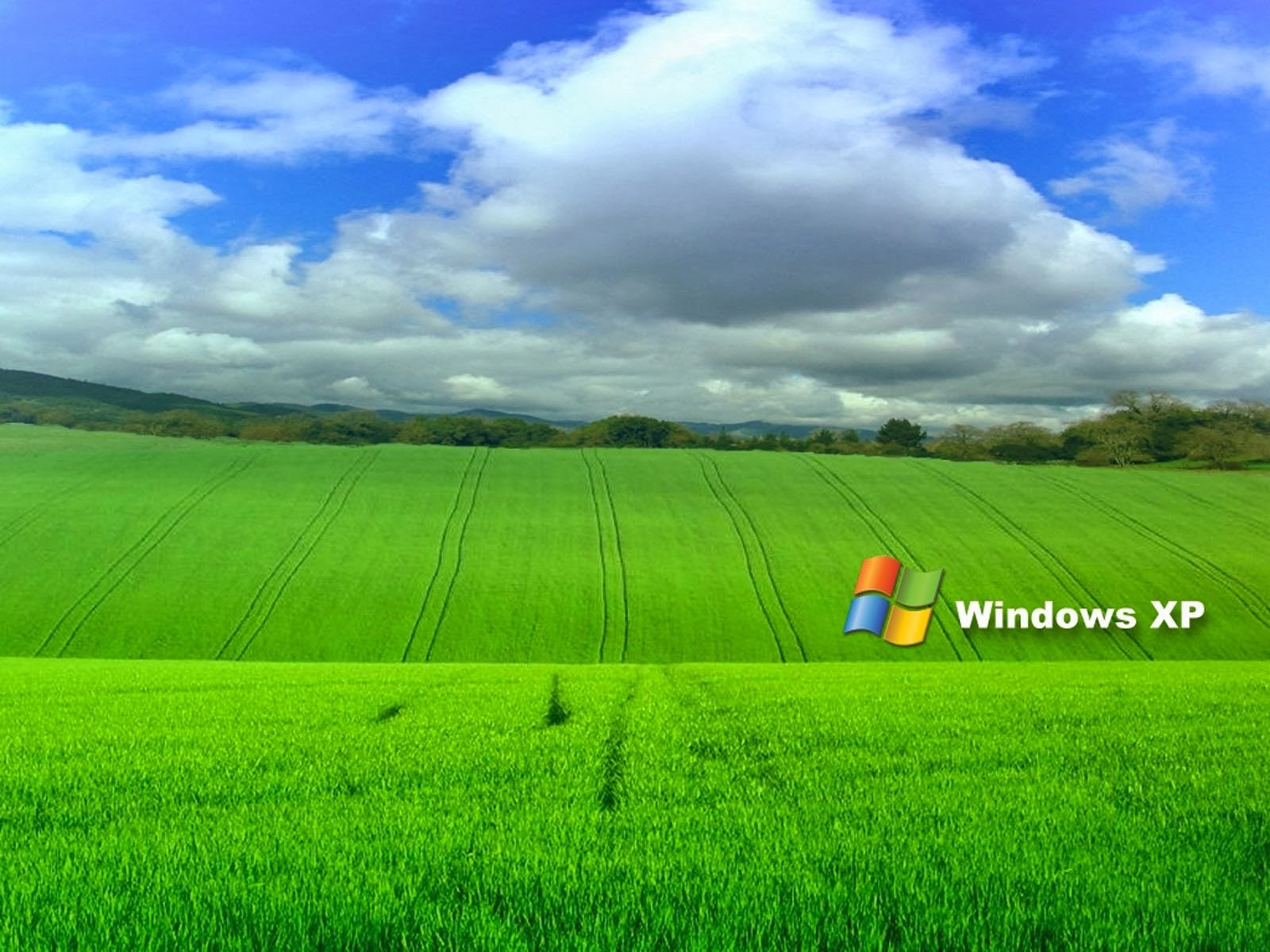 Windows Grass Wallpapers Wallpapers Hd 1600x1200