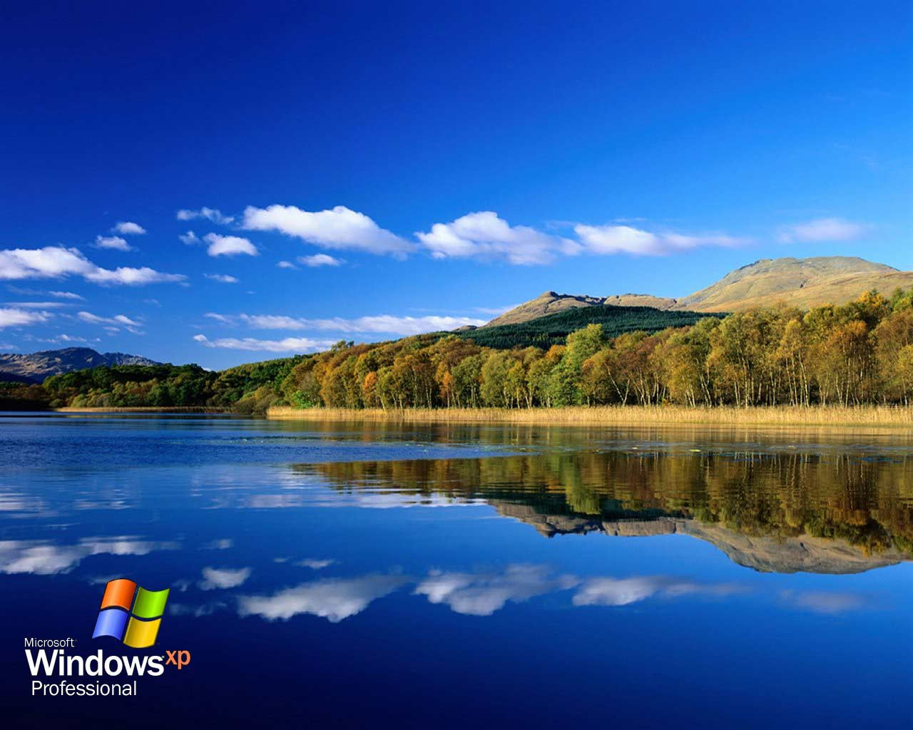 Download  HD Windows XP Wallpapers for Free 1280x1024