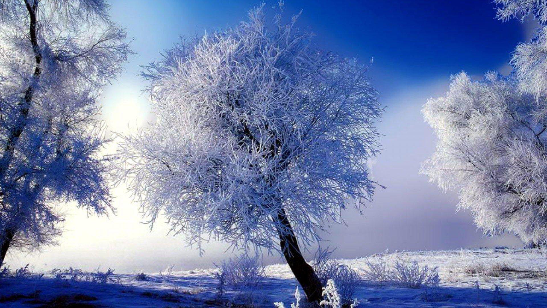 christmas scenery free download hd snowy christmas scene 1920x1080