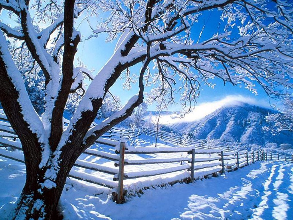 Cool Wallpaper High Resolution Winter - Winter-Computer-Wallpapers-Free-070  Perfect Image Reference_807385.jpg