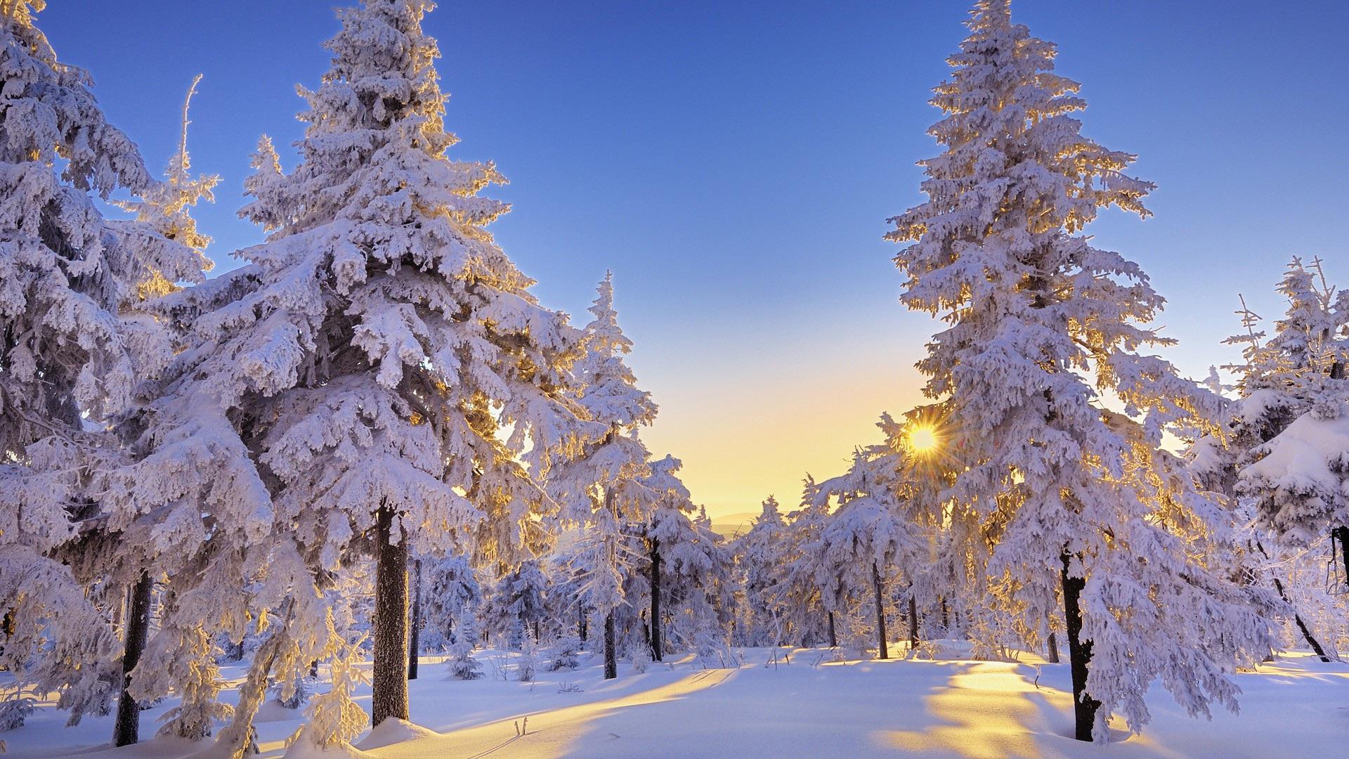 winter backgrounds for desktop pixelstalk collection of free winter