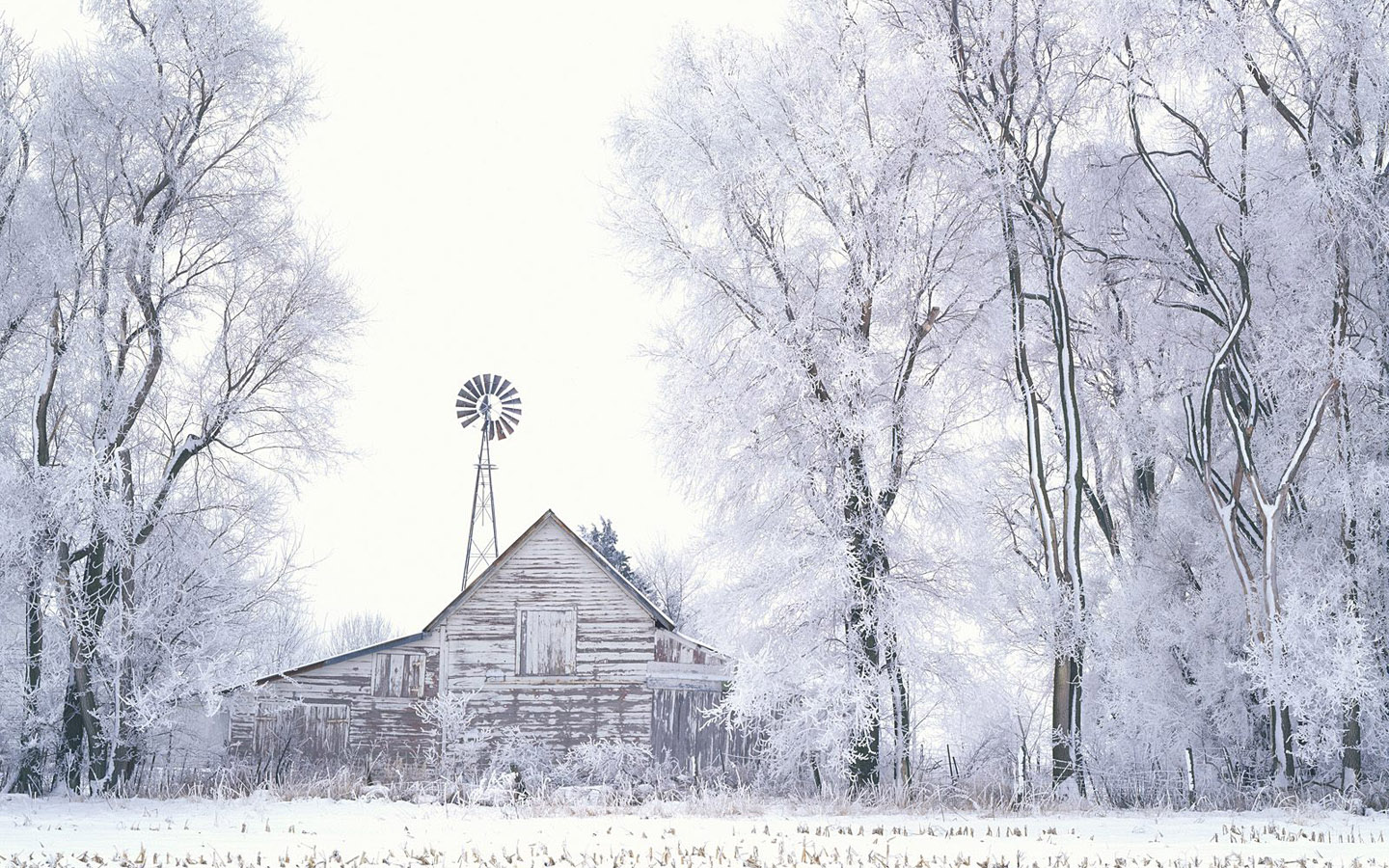 free desktop wallpapers winter scenes wallpaper 1440x900