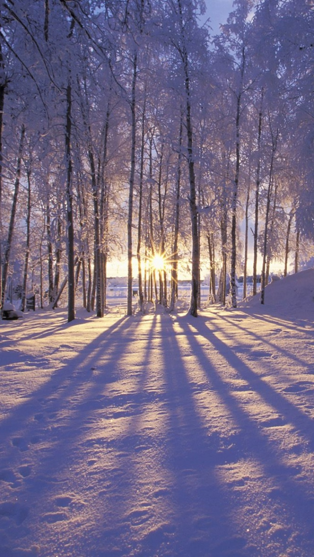 Winter Wallpapers For Computer Desktop Wallpaper 640x1136