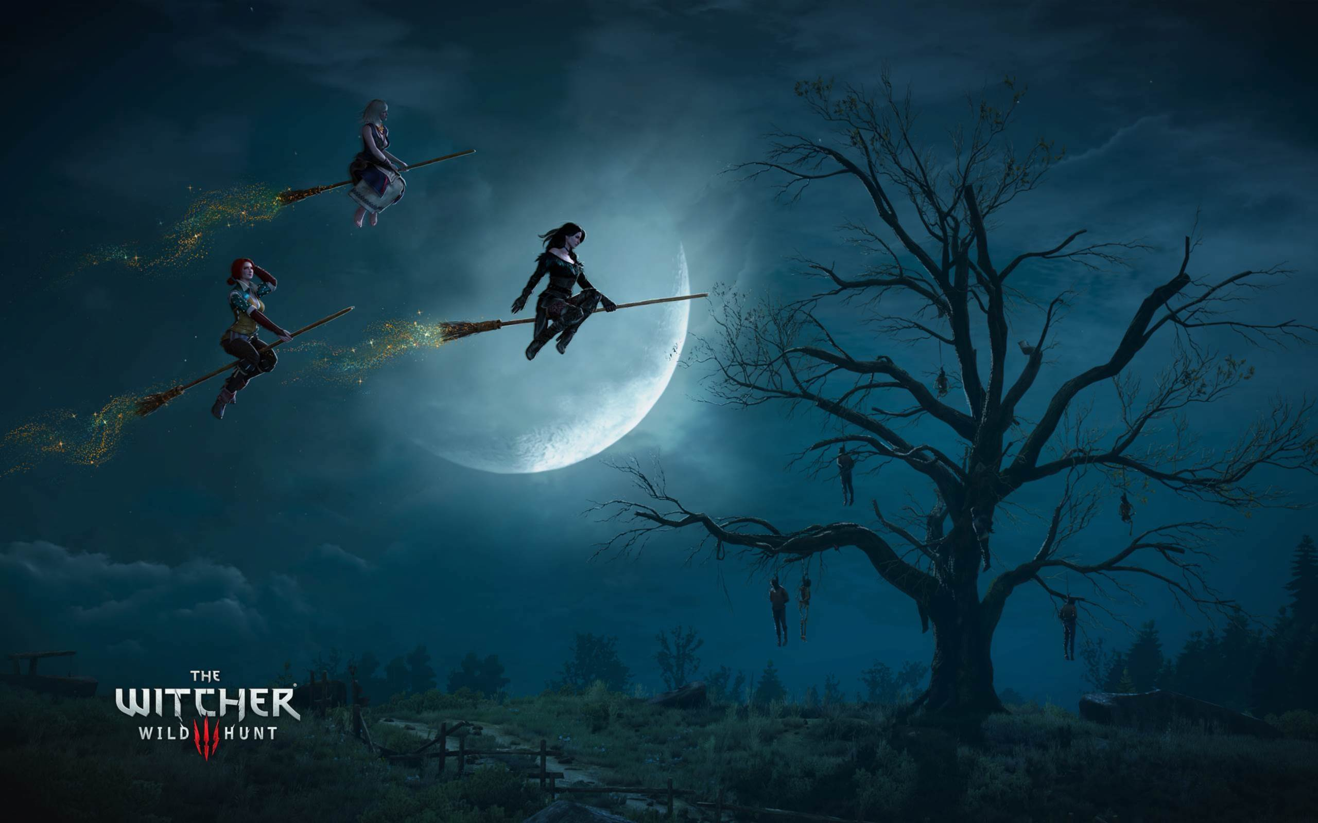 the witcher 3 wild hunt witches wallpapers | hd wallpapers