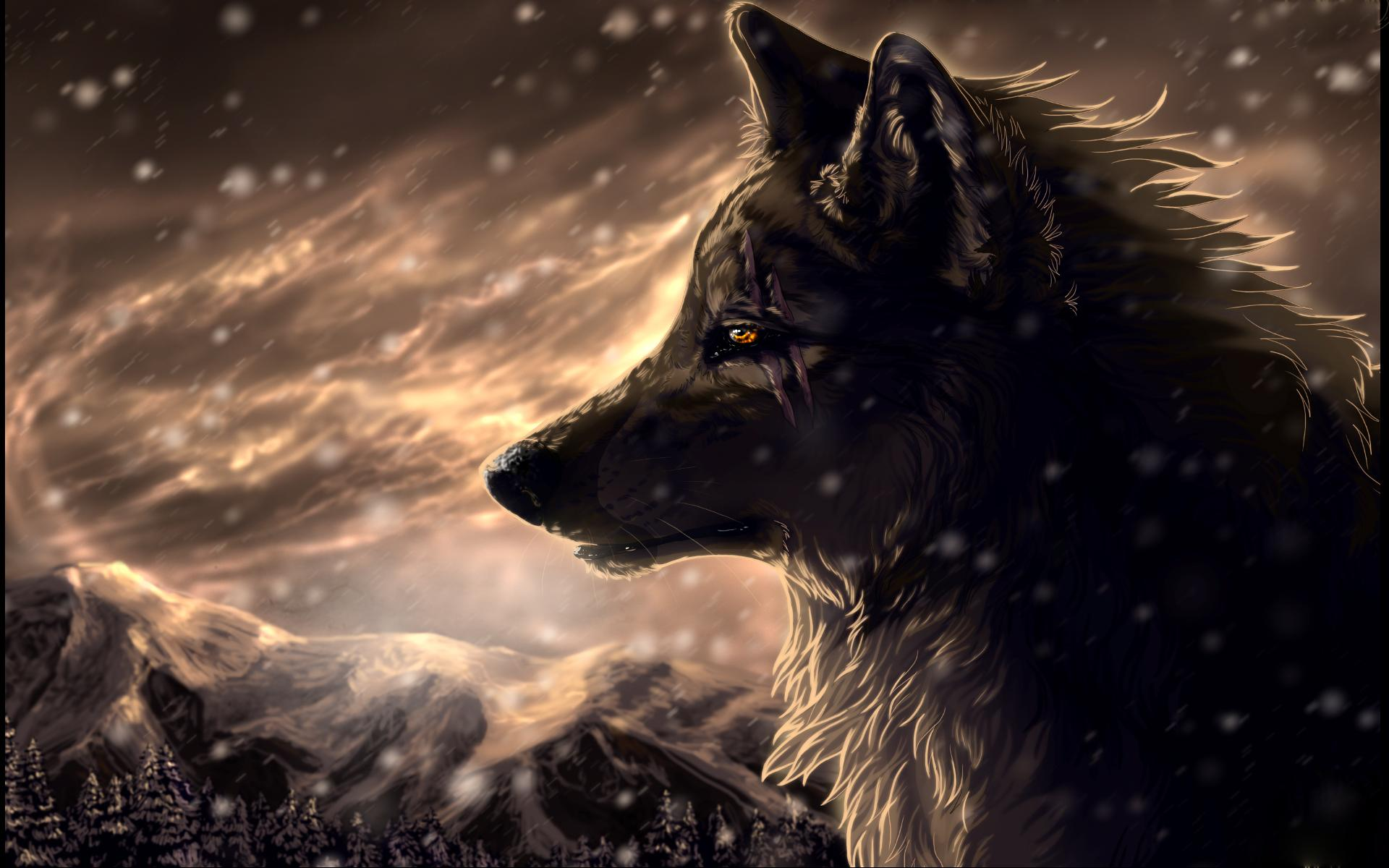 Collection Of Blue Wolf Wallpaper On HDWallpapers 1920x1200