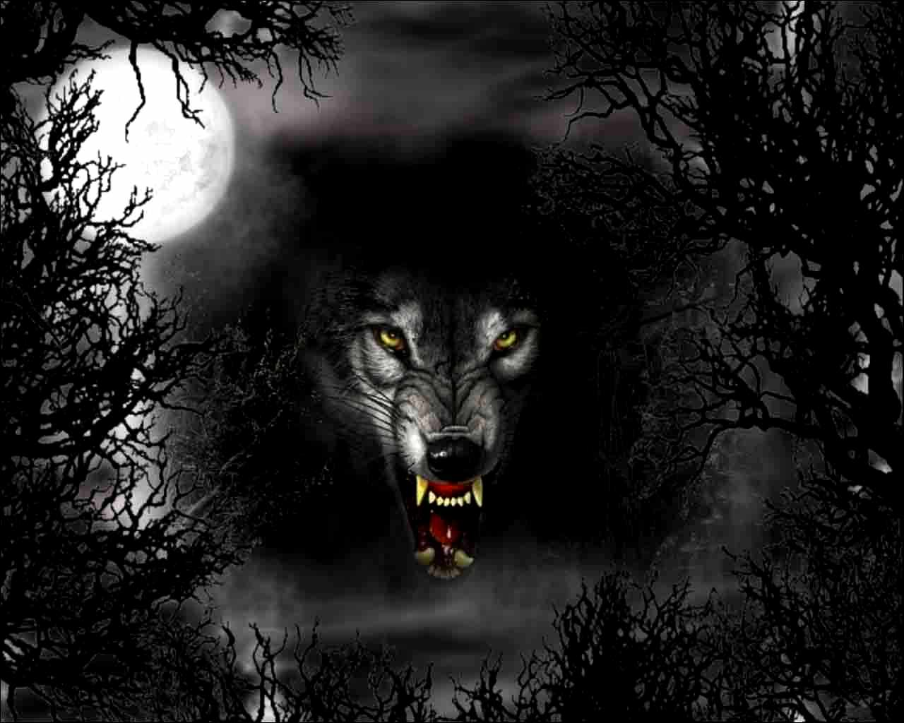 Howling Wolf Wallpapers Wallpaper 1280x1024