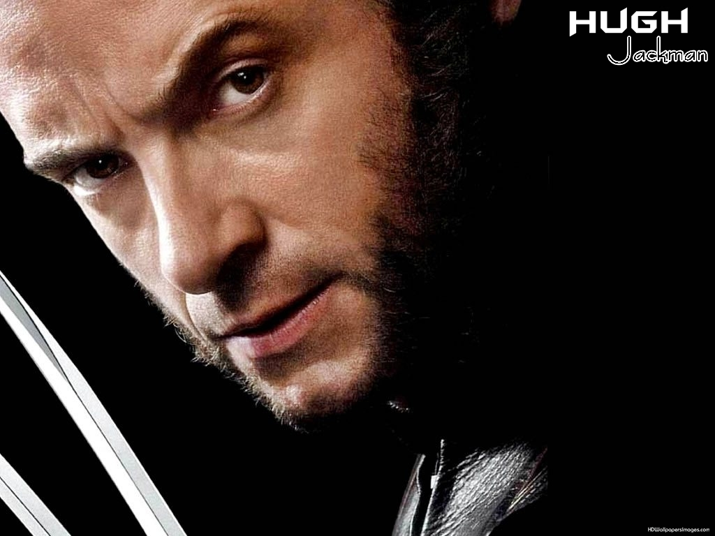 Wolverine Hd Wallpapers Collection 1024x768
