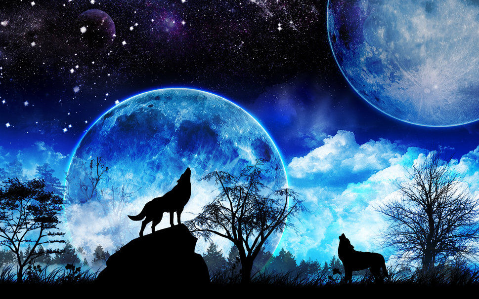 Wolf Fantasy Wallpapers Group 969x606