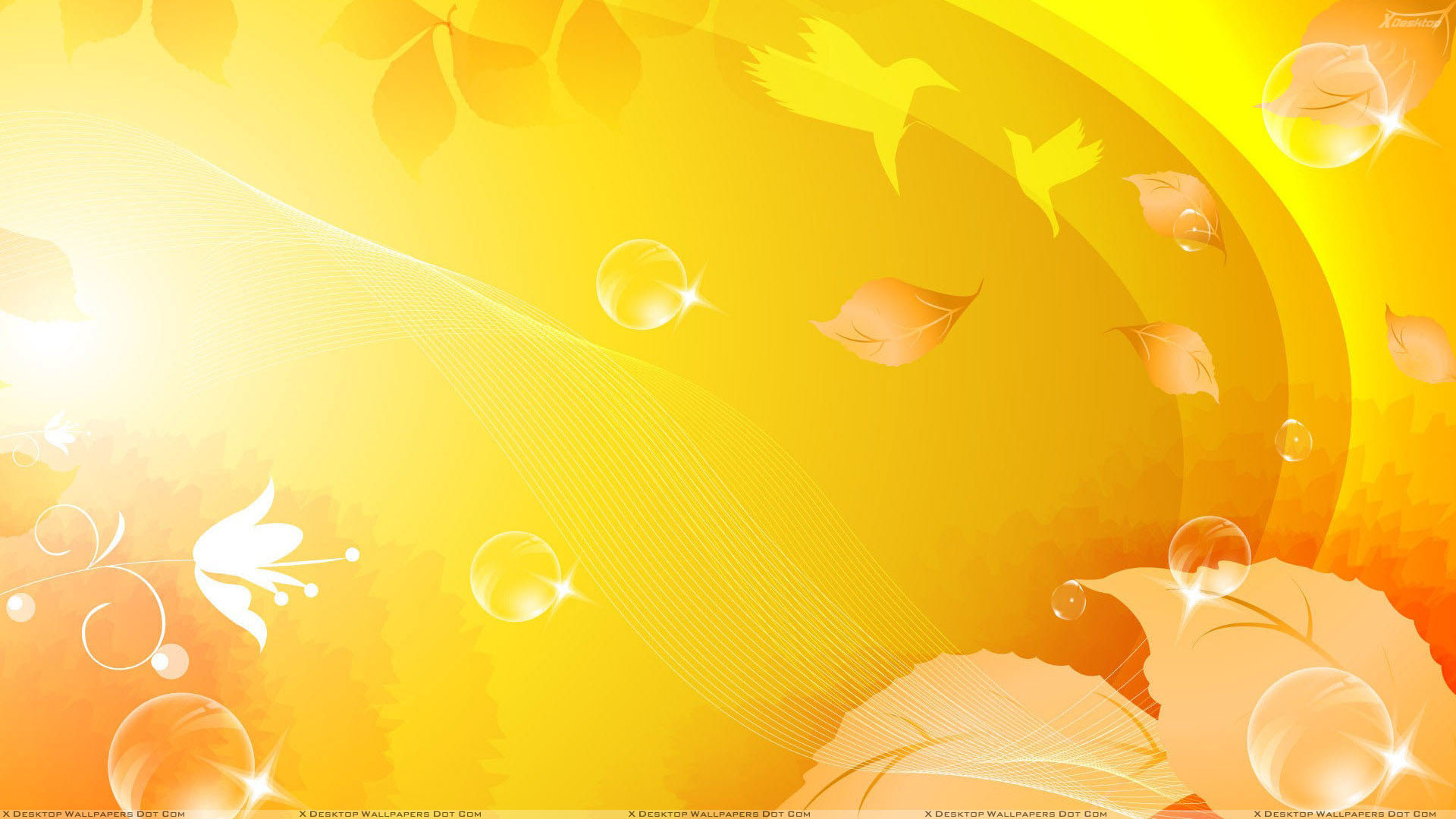desktop wallpapers a flowers backgrounds a big yellow flower a www 1920x1080
