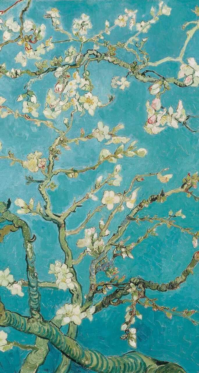 Van Gogh Blossom Wallpapers Wallpaper